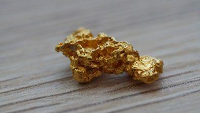 Zarodek złota